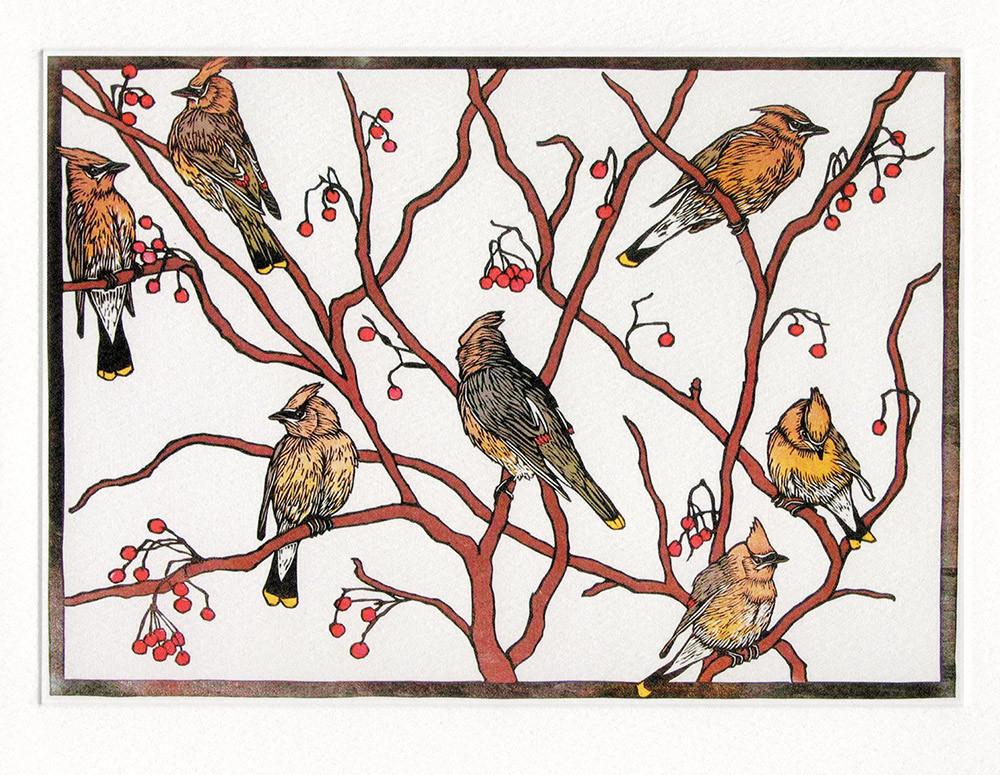 Waxwings- Winter Printmakers card