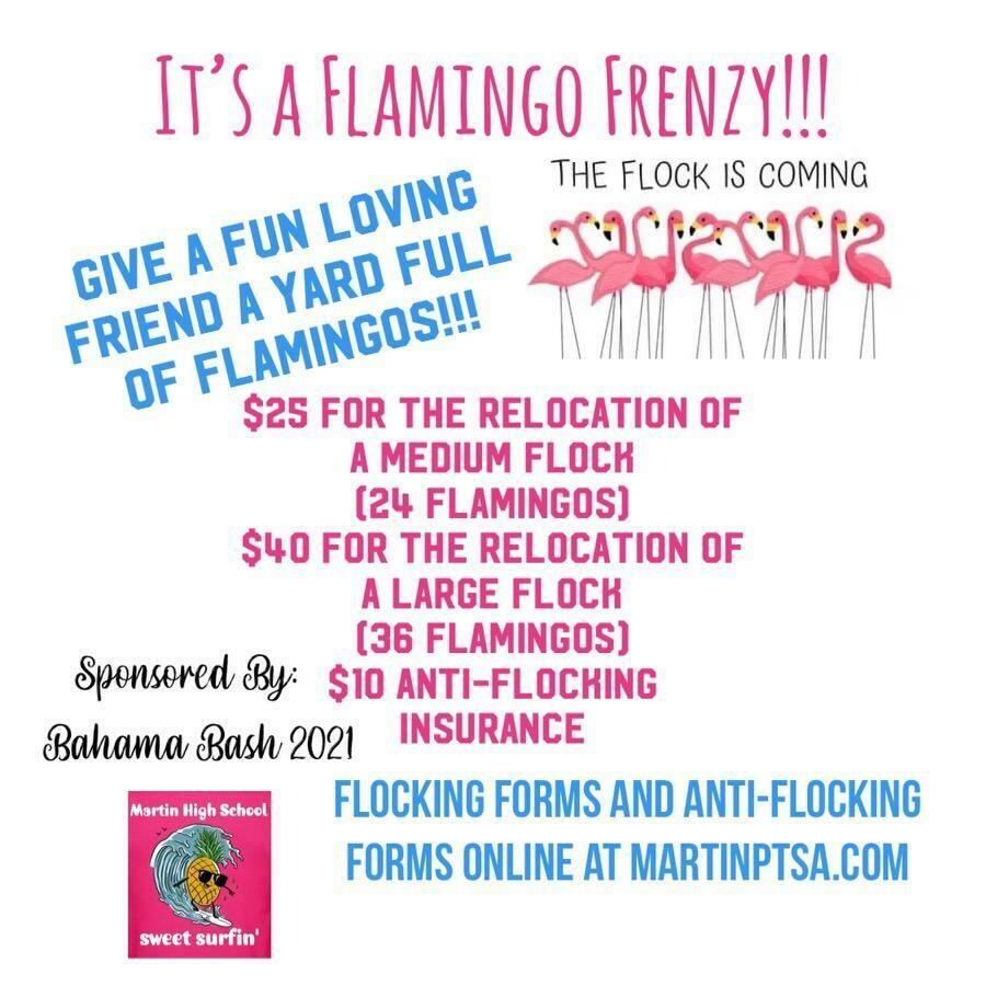 Flamingo Flocking 2021