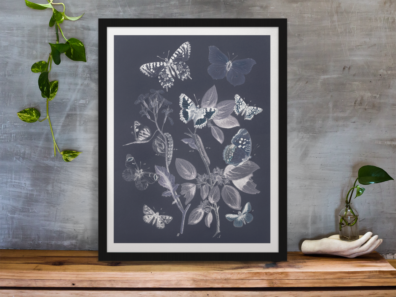 Vintage Butterflies & Moths (Blue Edition)