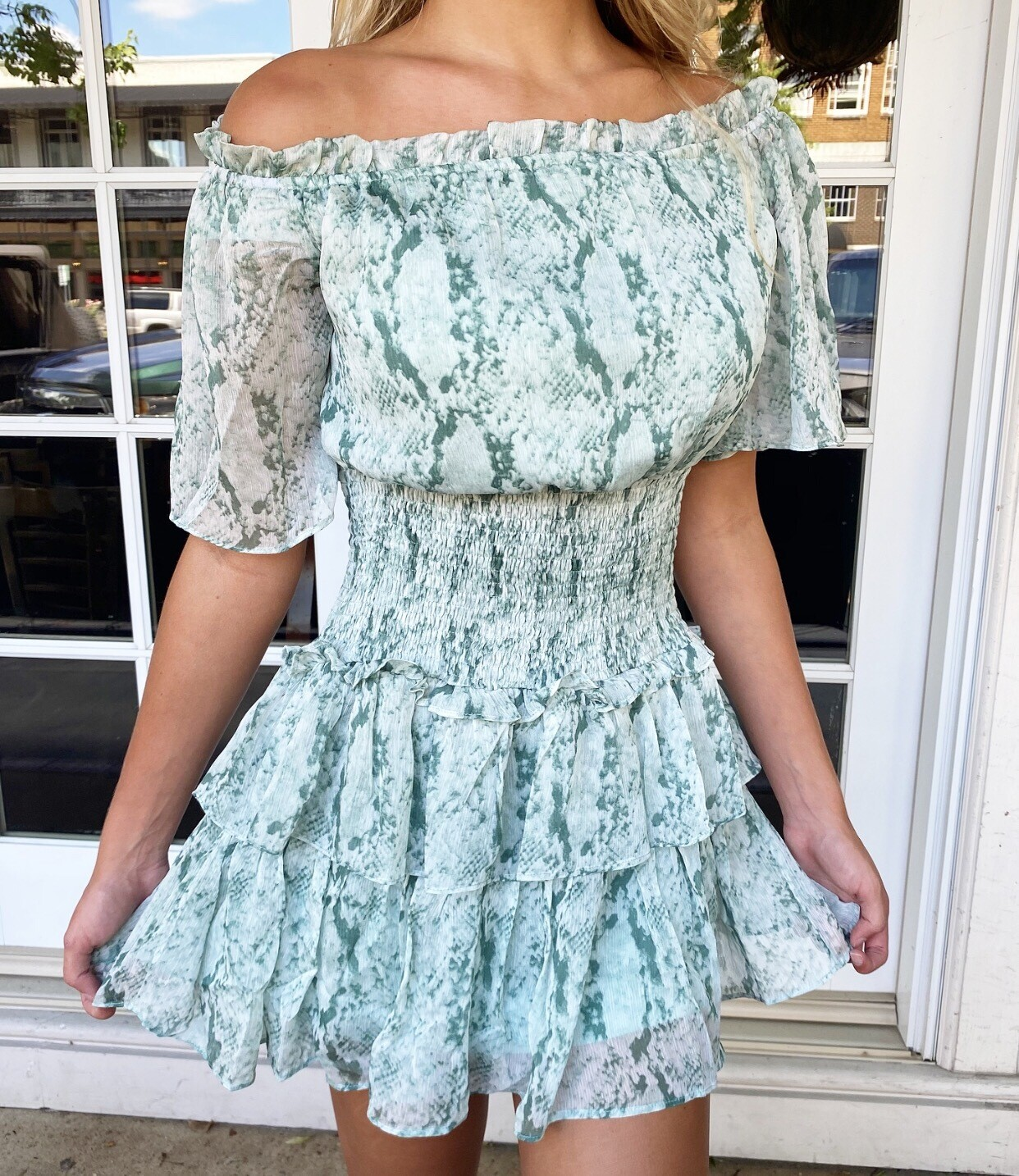Mint To Be Snake Dress