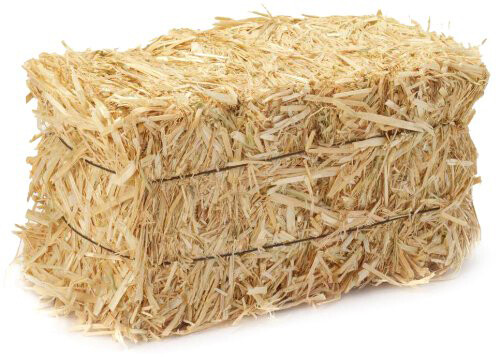 Straw bale - full size2759