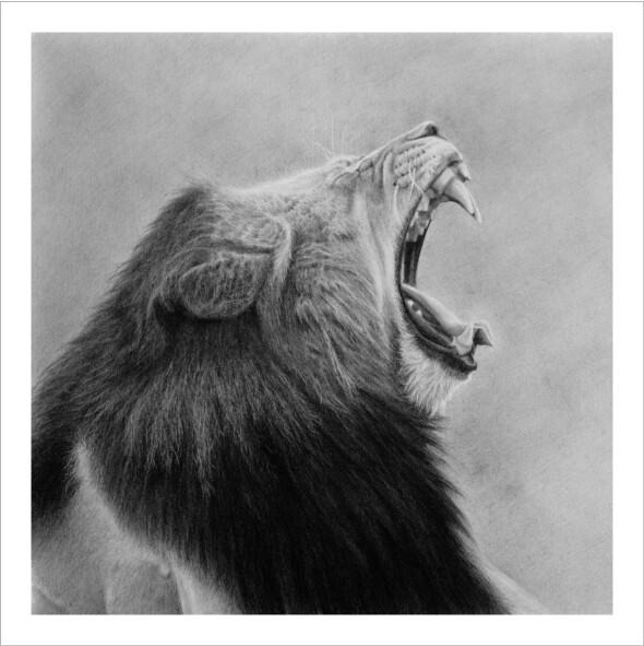 """""""Zuka Lion"""""""