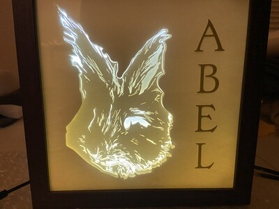Lighted Shadow Box