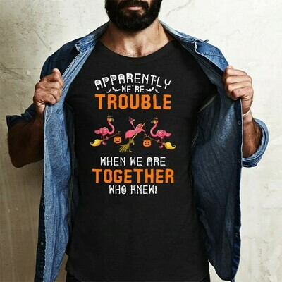 Flamingo Halloween Witch Apparently we're trouble when we are together who knew Gifts T-Shirts for Family Vacation Team Bestie Friends Party Long Sleeve Sweatshirt Hoodie Jolly Family Gifts