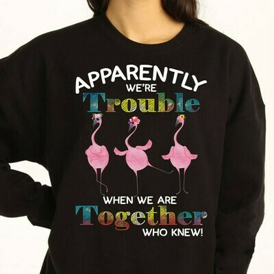 Flamingo Sun Flowers Apparently we're trouble when we are together who knew Gifts T-Shirts for Family Vacation Team Bestie Friends Party Long Sleeve Sweatshirt Hoodie Jolly Family Gifts