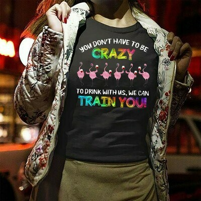 Flamingos 6 wine beer you don't have to be crazy to drink with us we can train you,lady women flamingo trouble together,flamingo team party Long Sleeve Sweatshirt Hoodie Jolly Family Gifts