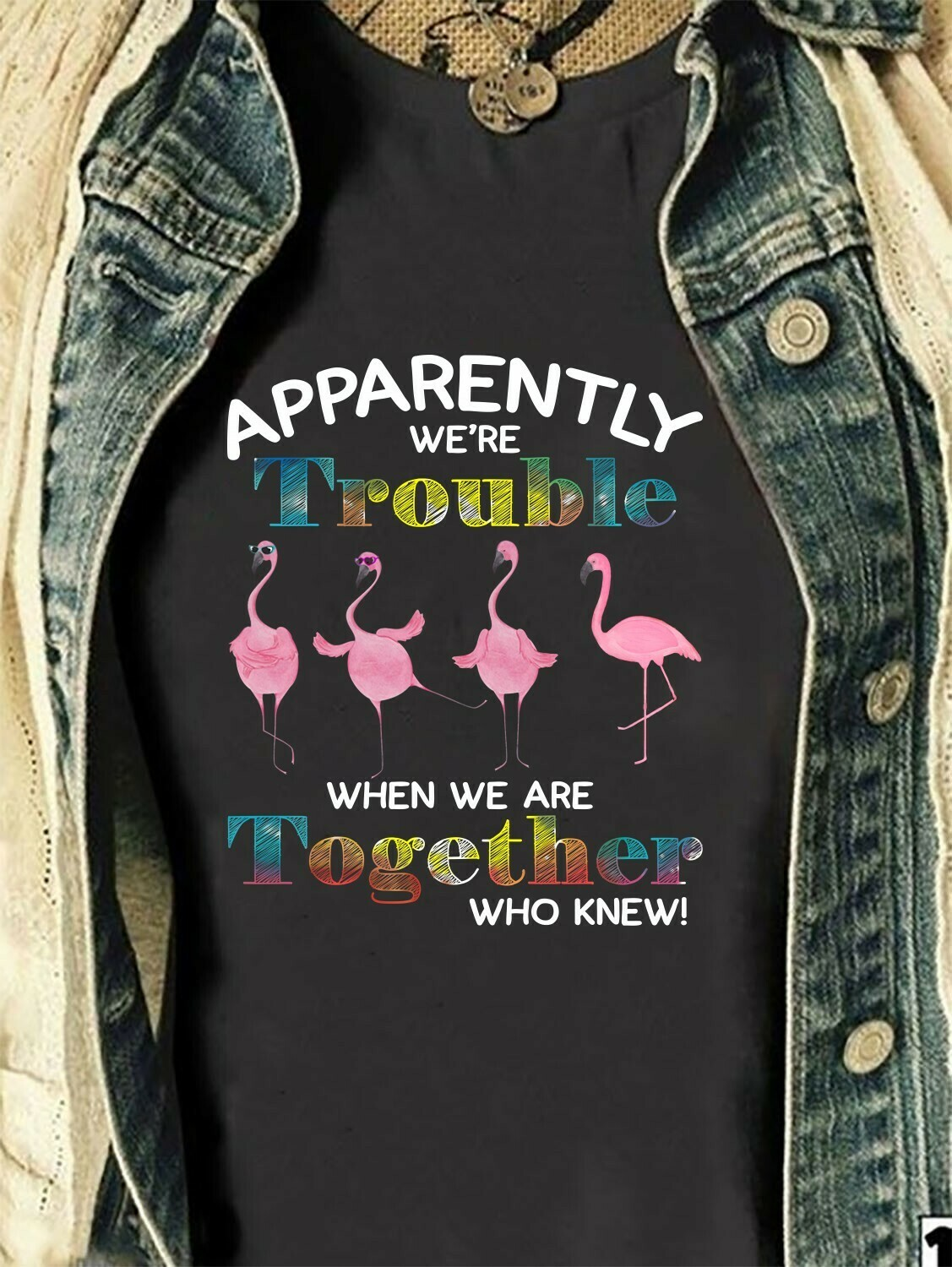 Flamingo4 Apparently We Are Trouble Together Who Knew Funny Woman Lady Flamingo Family Vacation Friends Team Party Gift T-Shirt Long Sleeve Sweatshirt Hoodie Jolly Family Gifts