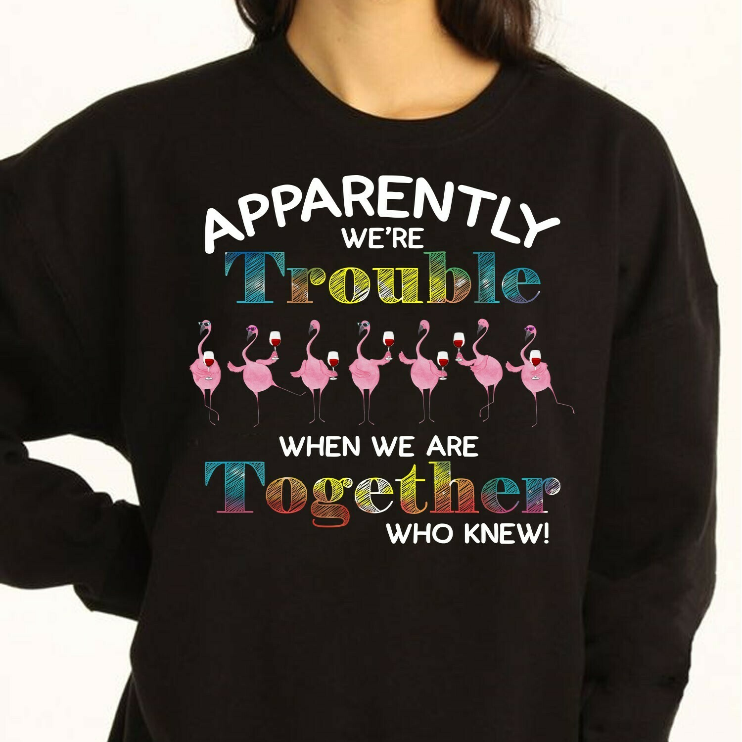 Flamingo71 Wine Glasses Apparently We Are Trouble Together Who Knew Funny Woman Lady Flamingo Family Vacation Friend Team Party Gift T-Shirt Long Sleeve Sweatshirt Hoodie Jolly Family Gifts