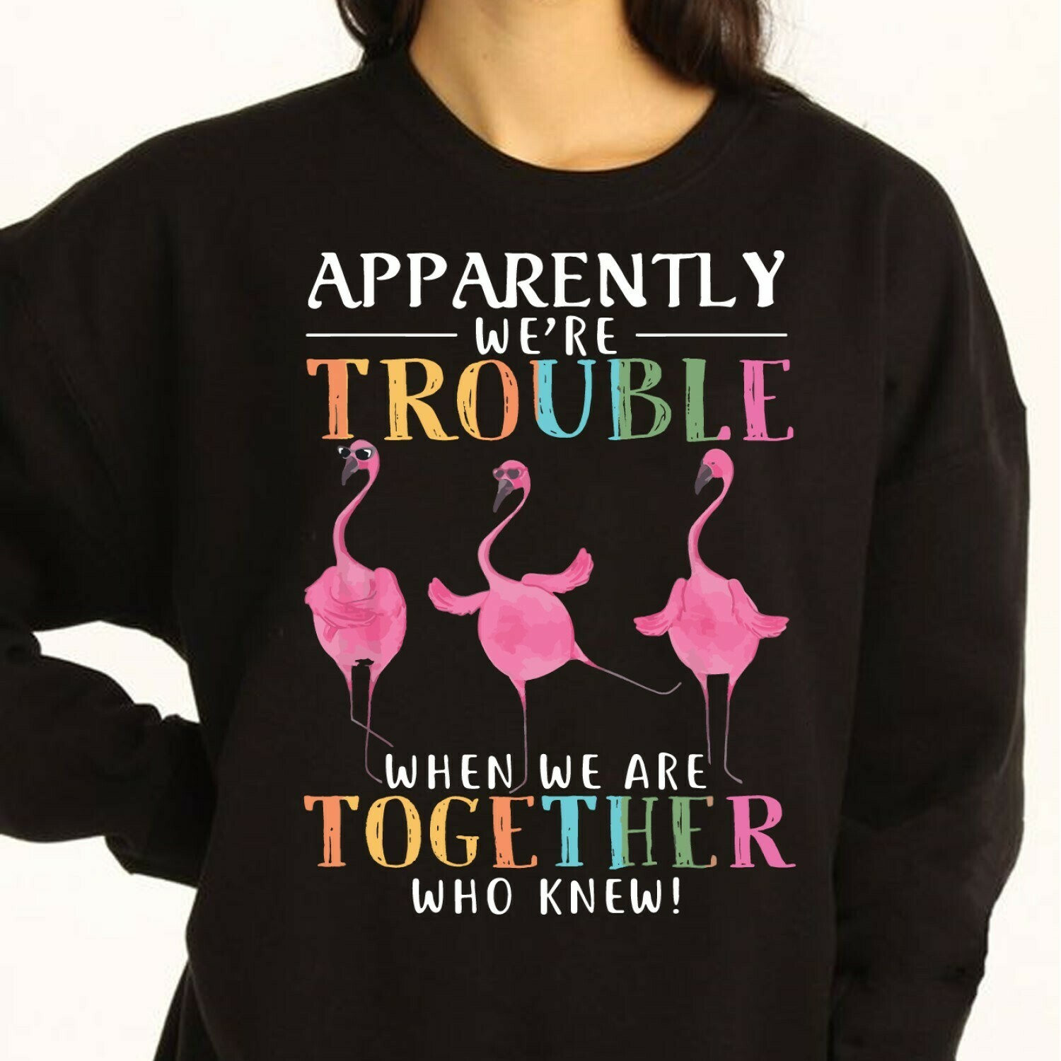 Apparently We Are Trouble When We Are Together Who Knew Funny Wine Flamingo Party Vacation Gift For Friends Team Group Camping Girls T Shirt Long Sleeve Sweatshirt Hoodie Jolly Family Gifts