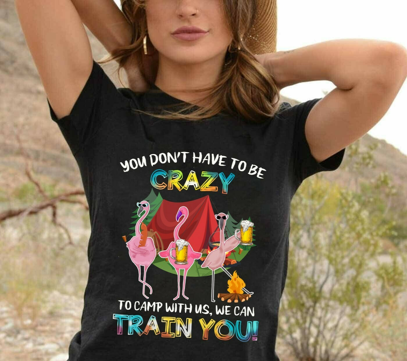 You Don't Have To Be Crazy To Camp With Us, We Can Train You Funny Flamingo Party Vacation Gift For Friends Team Group Camping Girls T Shirt Long Sleeve Sweatshirt Hoodie Jolly Family Gifts