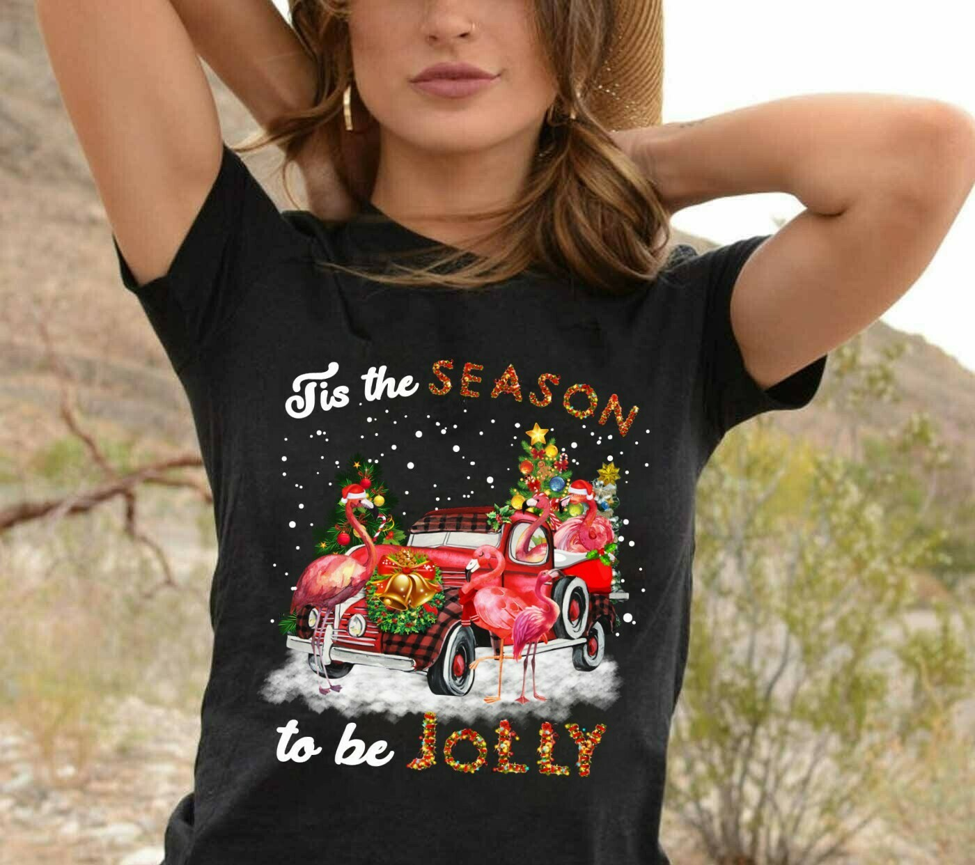 Flamingo On Red Car Merry Christmas Tis The Season To Be Jolly Gifts For Lovers Christmas Noel Family Vacation Friends Team Party T-Shirt Long Sleeve Sweatshirt Hoodie Jolly Family Gifts
