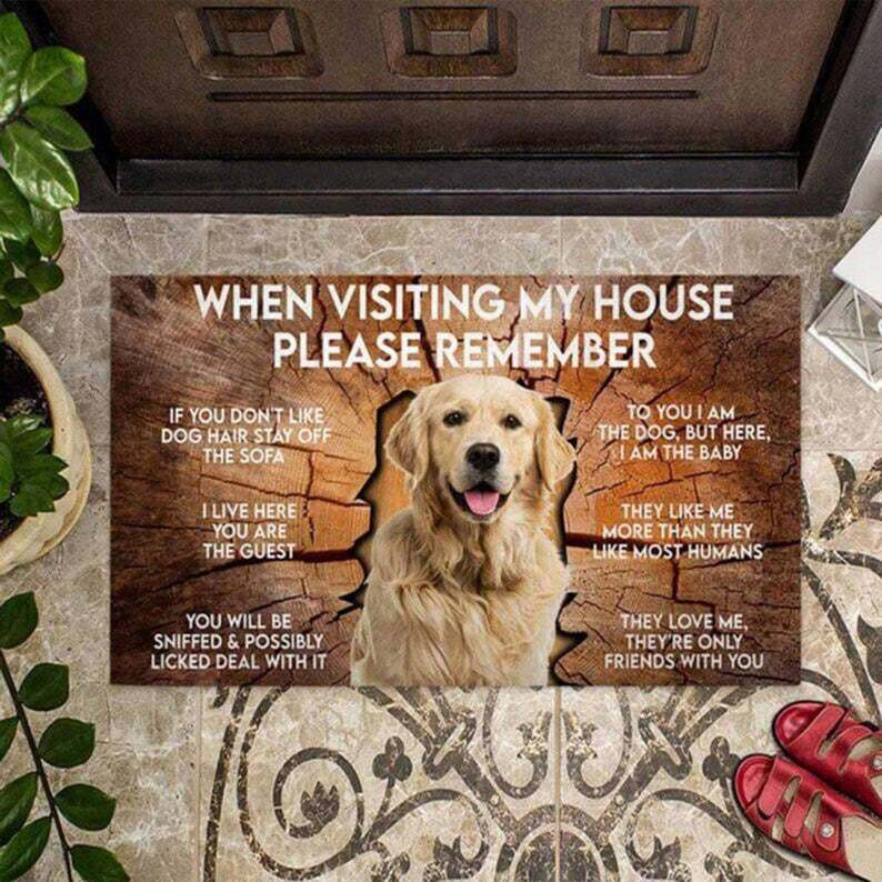 When Visiting My House Please Remember Labrador Retriever Doormat, Funny Labrador Owner Gift, Welcome Dog Front Rugs, Cute Outdoor Mat
