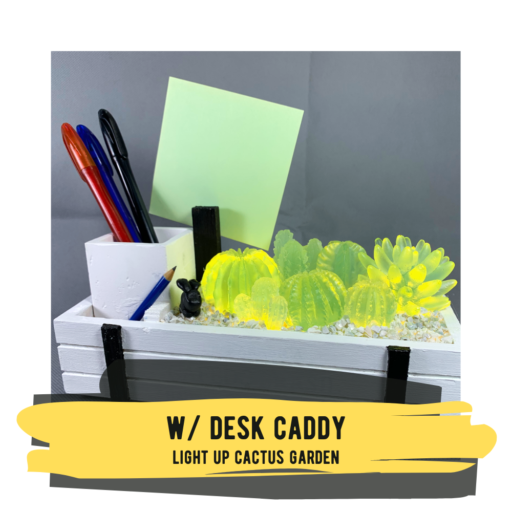 Light-up Cactus Garden with Desk Caddy