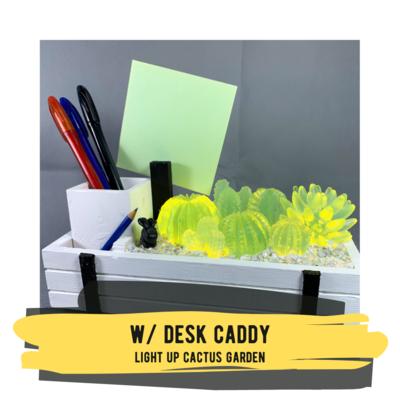 Light-up Cactus Garden with Desk Caddy