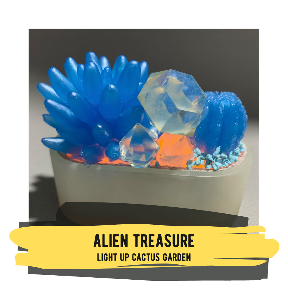 Light-up Cactus Garden - Alien Treasure