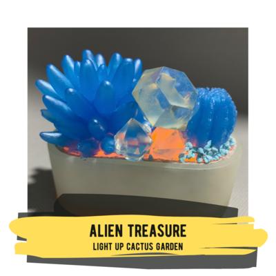 Light-up Cactus Garden - Alien Treasure