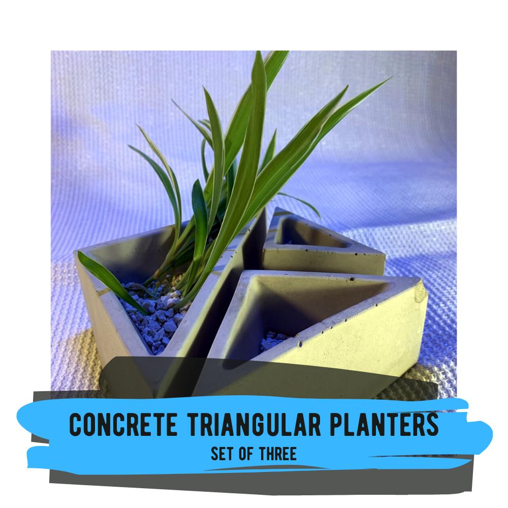 Concrete Triangular Planters - Set of 3