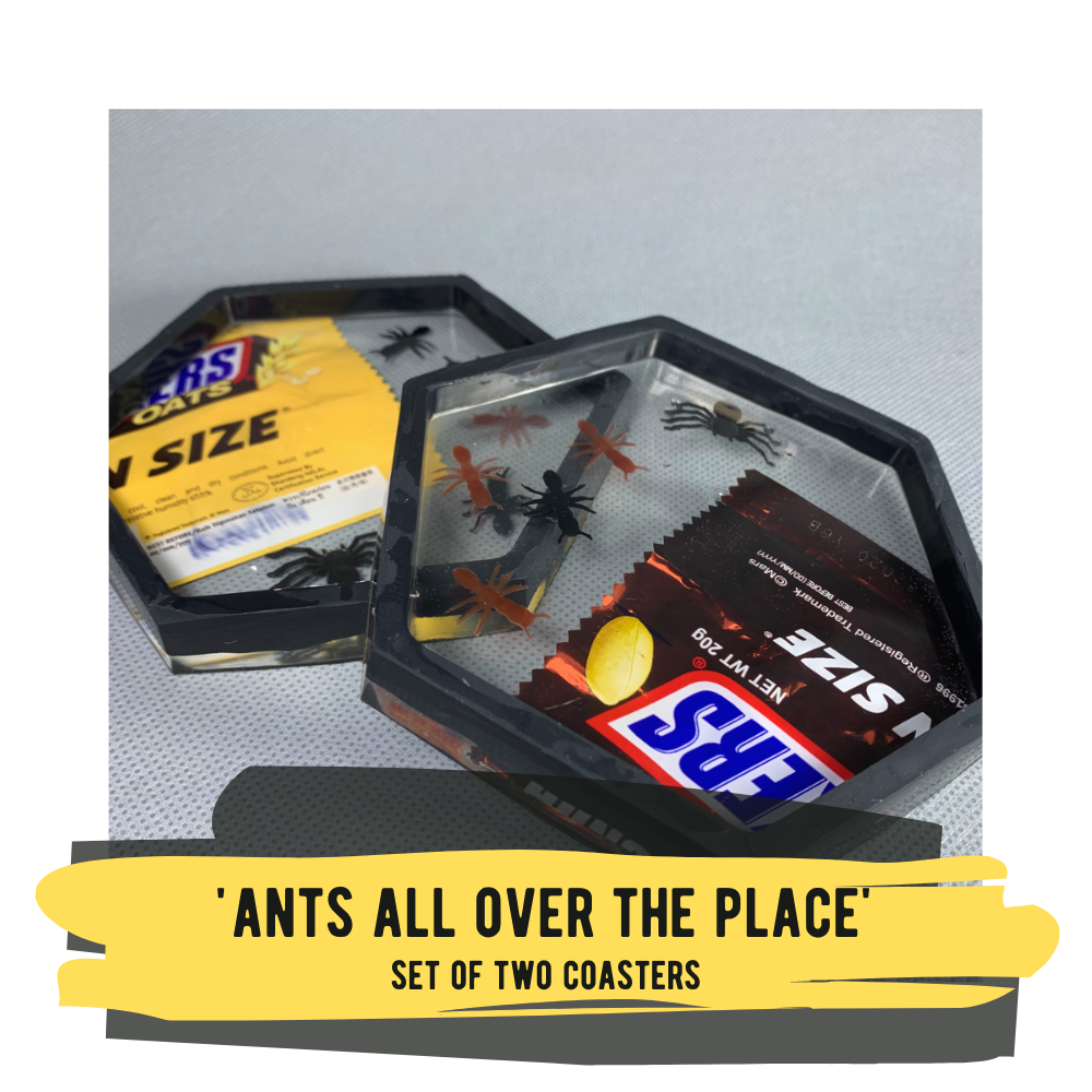 'Ants All Over The Place', Set of 2 Coasters