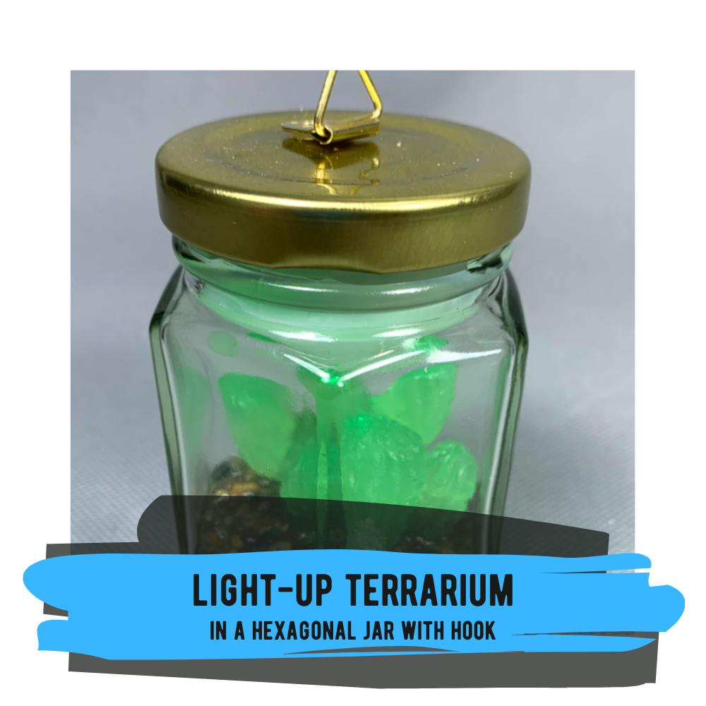 Light-Up Terrarium in Hexagonal Jar with Hook