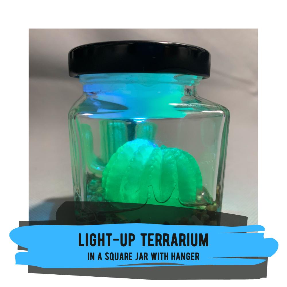 Light-Up Terrarium in Square Jar with Hanger
