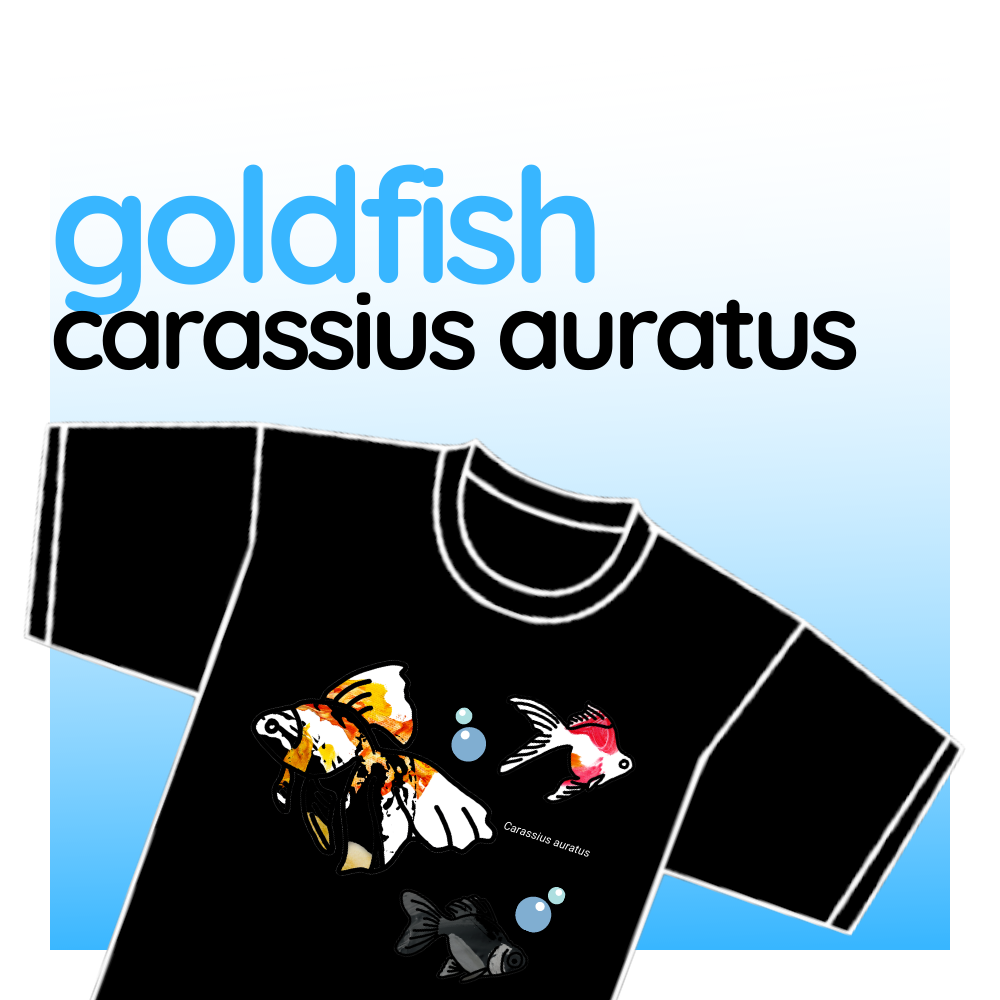 "T-shirt - ""Goldfish"""