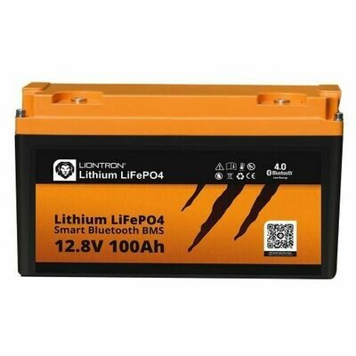 Akku LiFePO4 12,8V 100Ah Smart / Arctic BMS mit Bluetooth
