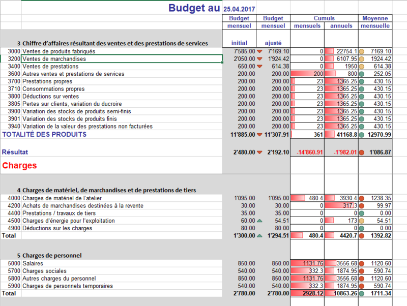 Budget professionnel mensuel