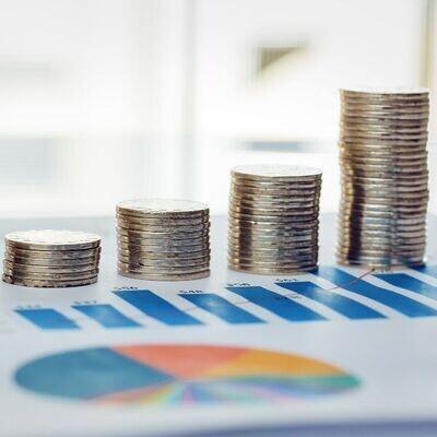 Finances personnelles (budget et fortune)