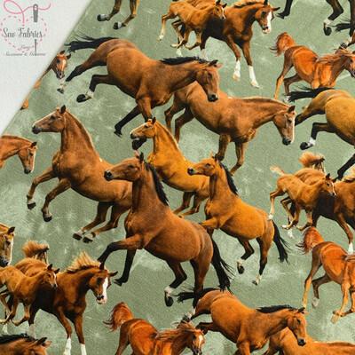 John Louden Horse Design Cotton Elastane Printed Jersey Fabric