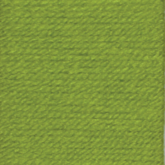 Apple 1852 Stylecraft Special DK 100% Premium Acrylic Wool Yarn