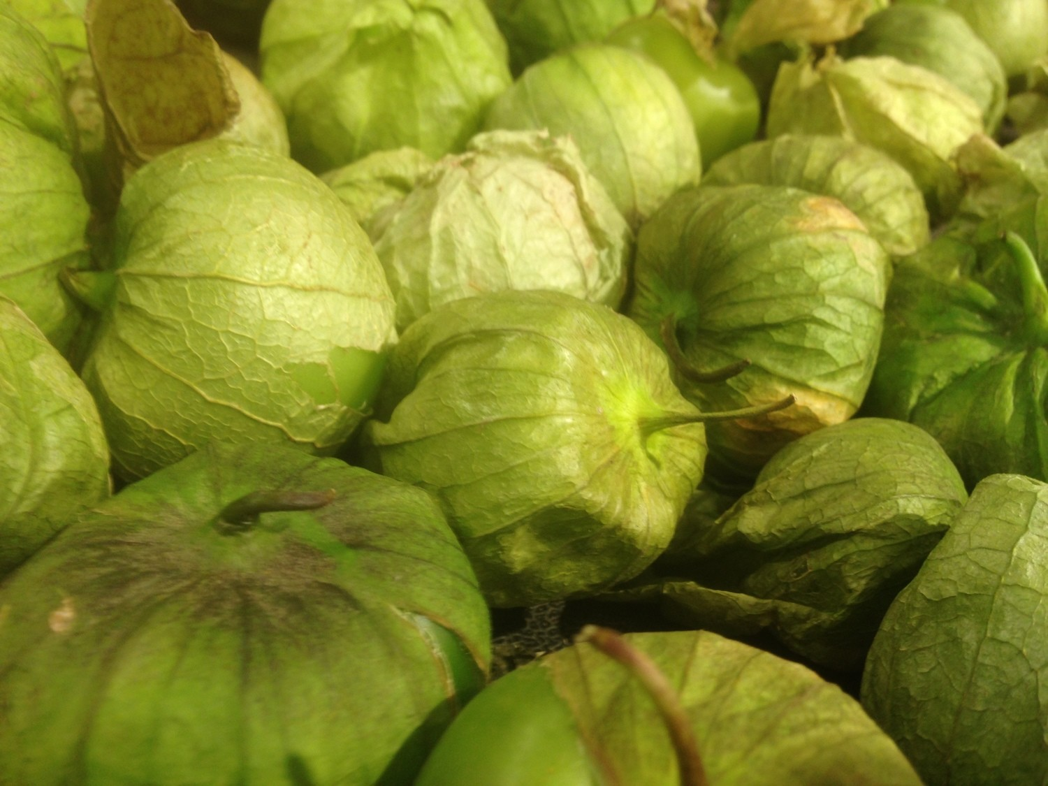 Produce, Vegetable, Tomatillos, Priced per pound