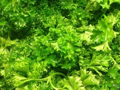 Fresh Salad Greens, Parsley (10 oz Bunch)