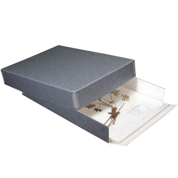 "Herbarium Box (17 x 12.25"" x 5"")"