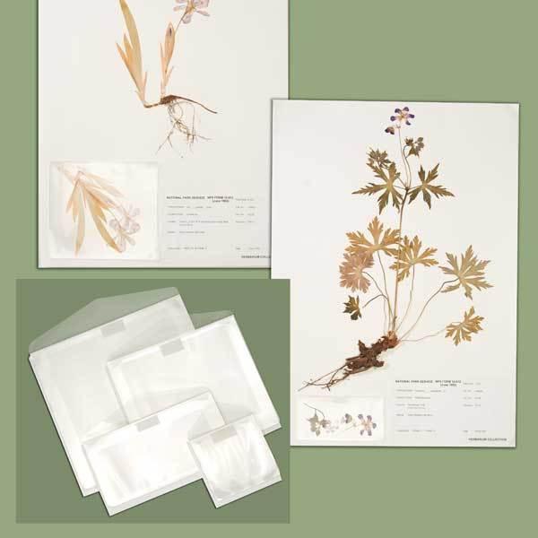Herbarium Pocket Packets