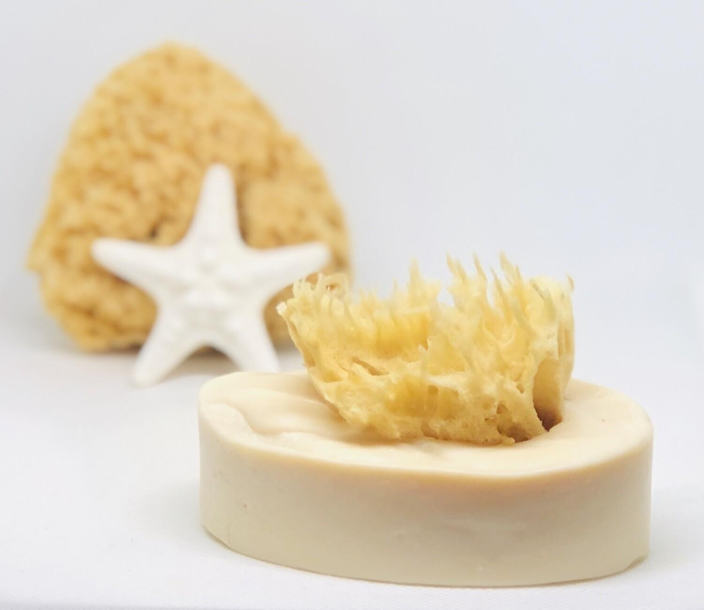 Coconut Lime Verbena Sea Sponge Soap