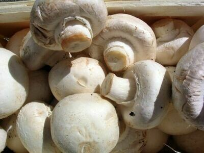 Mushrooms 200g