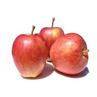 Shimla Apple (1 kg )