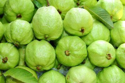 Raipur Guavas