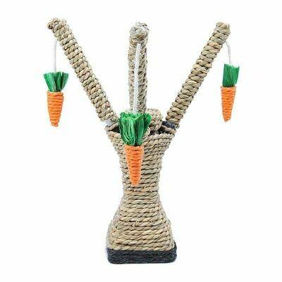 Carrot Tree Toy