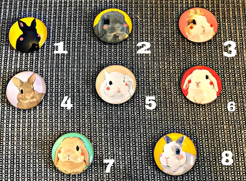 Fridge magnet  17 different types