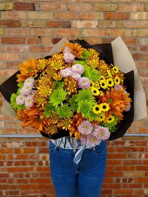 SPECIAL Giant Fall Mum Collection