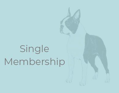 Club Membership - Single