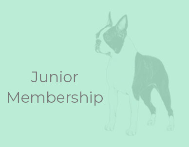 Club Membership - Junior