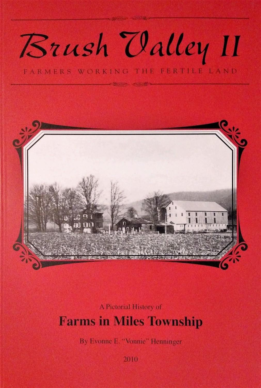 Brush Valley II: Farmers Working the Fertile Land
