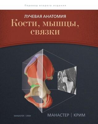 Лучевая анатомия: кости, мышцы, связки