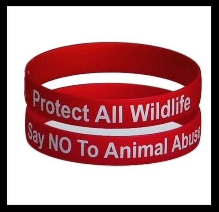 PROTECT ALL WILDLIFE - SAY NO TO ANIMAL ABUSE' WRISTBAND