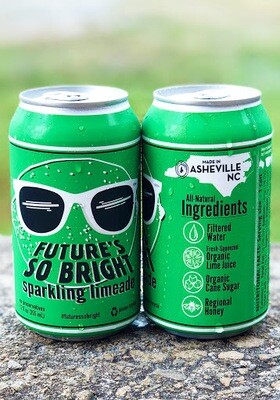 Devil's Foot Future's So Bright Sparkling Limeade (12oz)