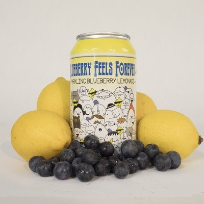 Devil's Foot Blueberry Feels Forever (12oz)