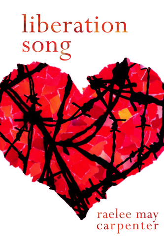 Liberation Song (eBook)