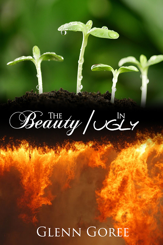 The Beauty in Ugly (eBook)